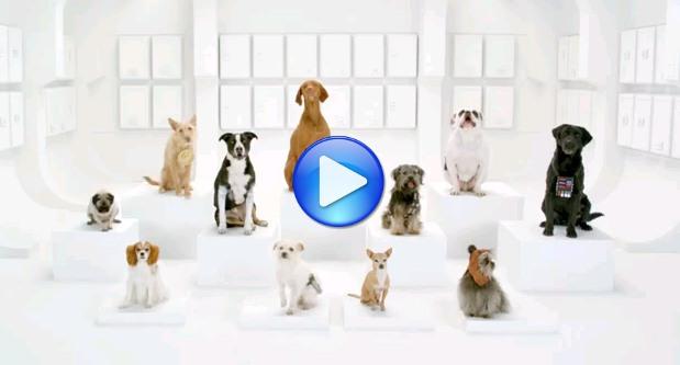 Video comercial Volkswagen: The Bark Side